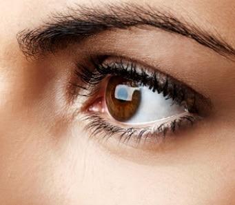 Abril Marrom: Mês de Prevenção e Combate às Diversas Espécies de Cegueira